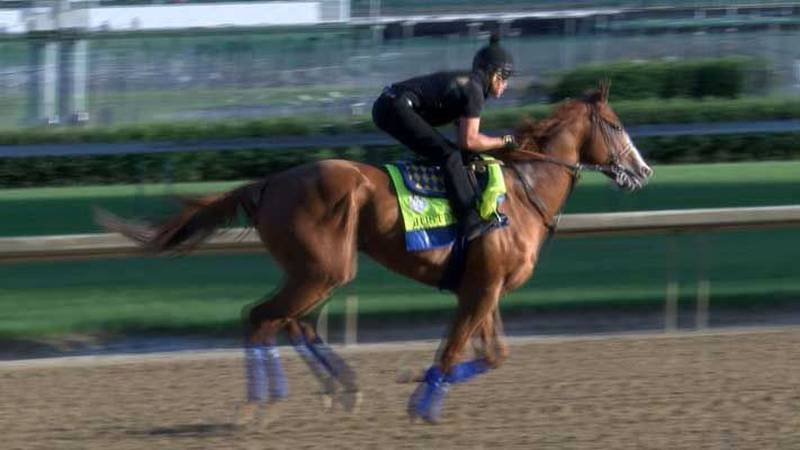 Fans got to Churchill Downs early on Thursday to see Derby winner Justify show off. (Source:...