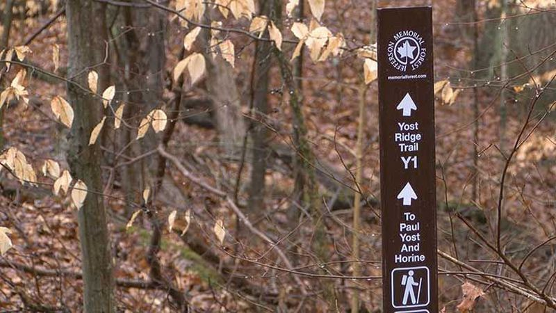 Someone is stealing trail markers inside Jefferson Memorial Forest. (Source: WAVE 3 News)