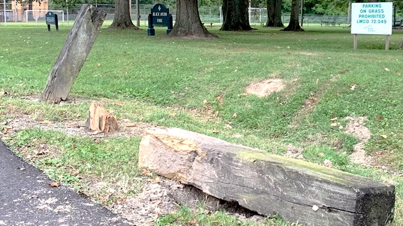 Daron Washington, 42, crashed on Oaklawn Lane near Black Mud Park around 9 p.m. Sunday,...