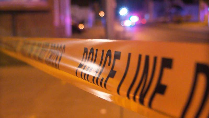 Late Monday night, a woman was hit and killed while attempting to cross Dixie Highway to help...