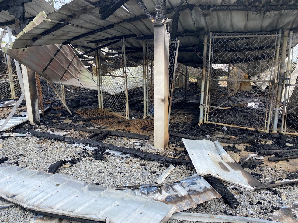 fire at Doggy Style Kennels