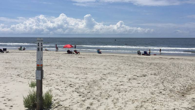 All was clear on Sullivan's Island after a trapper caught an alligator on the beach. (Source:...
