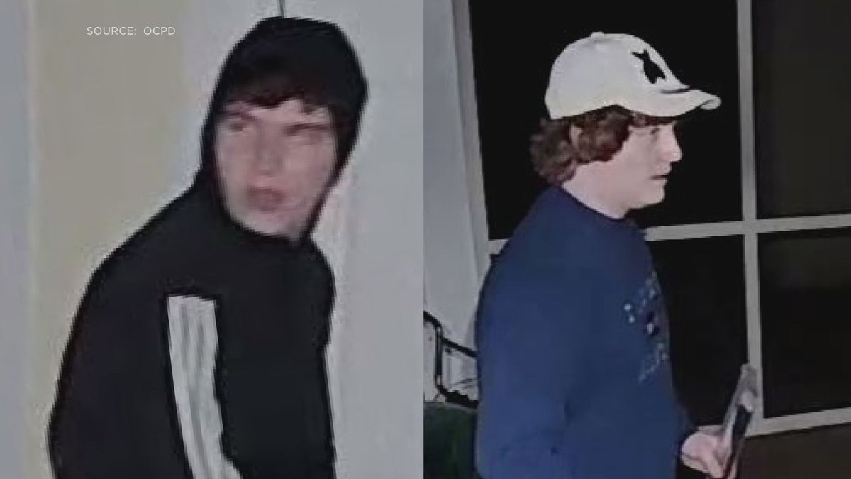 These two men were caught on camera during a burglary at a home in Prospect.