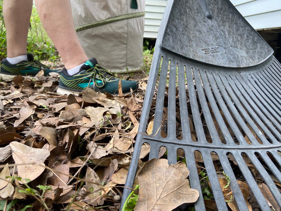A half-hour of raking leaves can burn more calories than general weightlifting, according to...