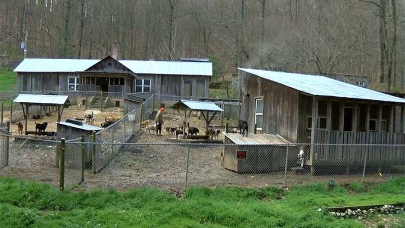 Here's a wider view of part of the Trixie Foundation property in Webville, Ky., looks like.