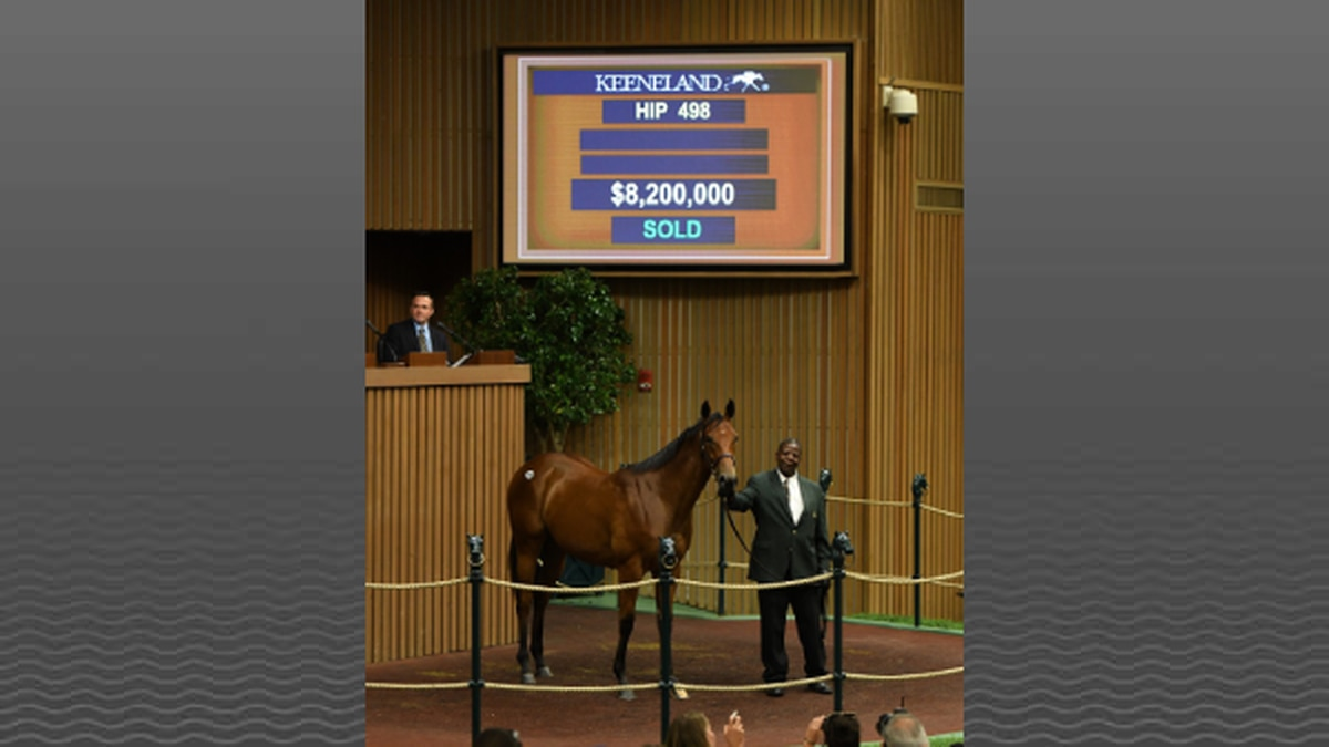The $8.2 million price set a September Sale record for a filly and equals the fourth-highest...