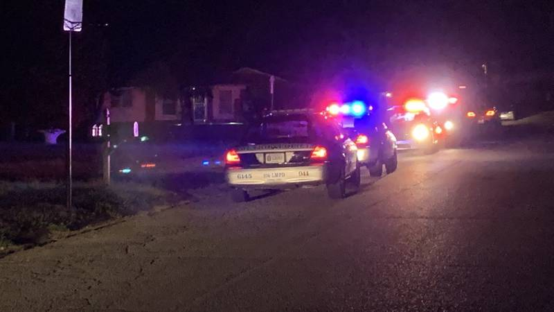 A man is dead after being shot on Wilson Avenue off of Dixie Highway in west Louisville.