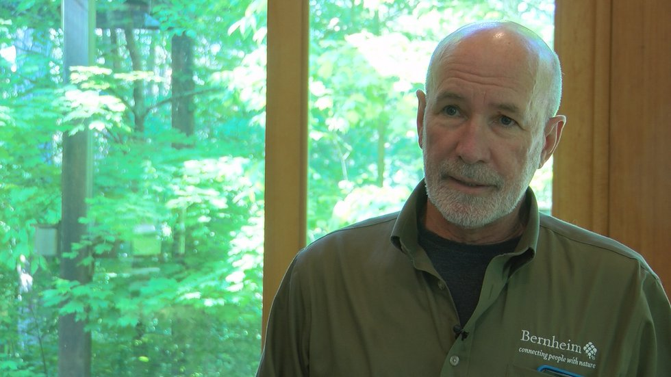 Dr. Mark Wourms is the executive director at Bernheim Arboretum and Research Forest.