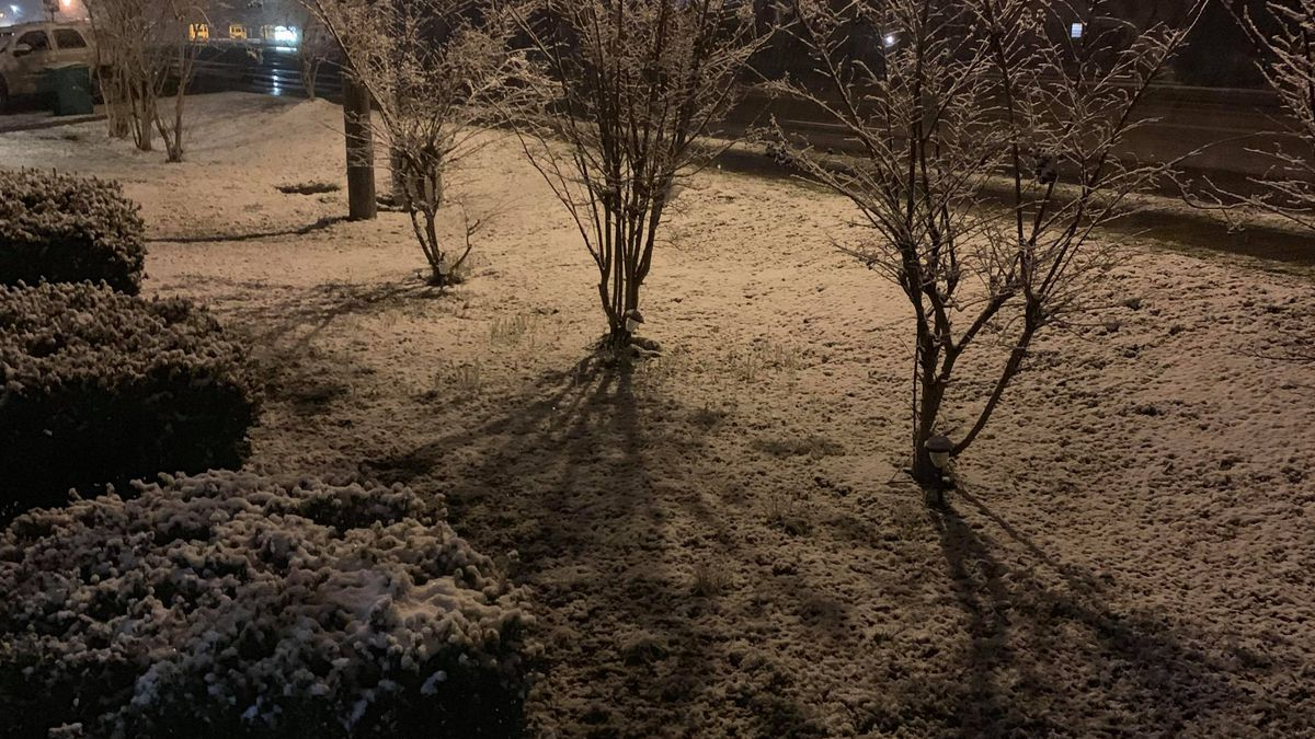 Snow in Dublin in Bladen County (Courtesy of Joseph Gooden)