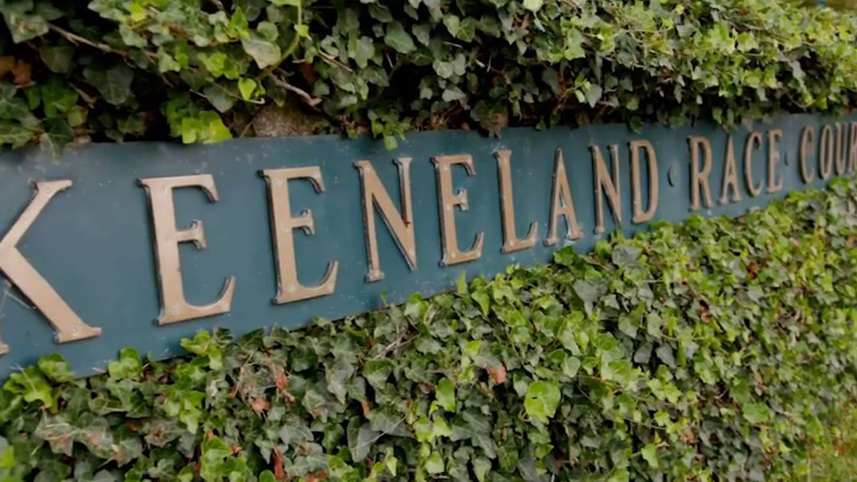 Keeneland has announced a horse has died and the jockey was injured in a turf race on...