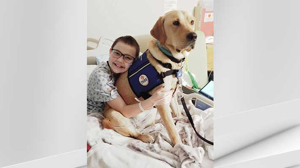 Kodi Worley, 12, battling a host of chronic illnesses since January 2020.