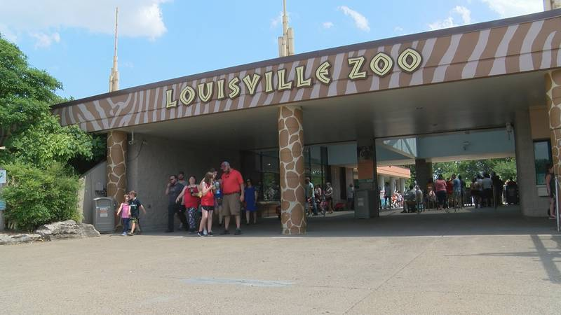 The Louisville Zoo has asked Metro Council for more funding as it continues community efforts.