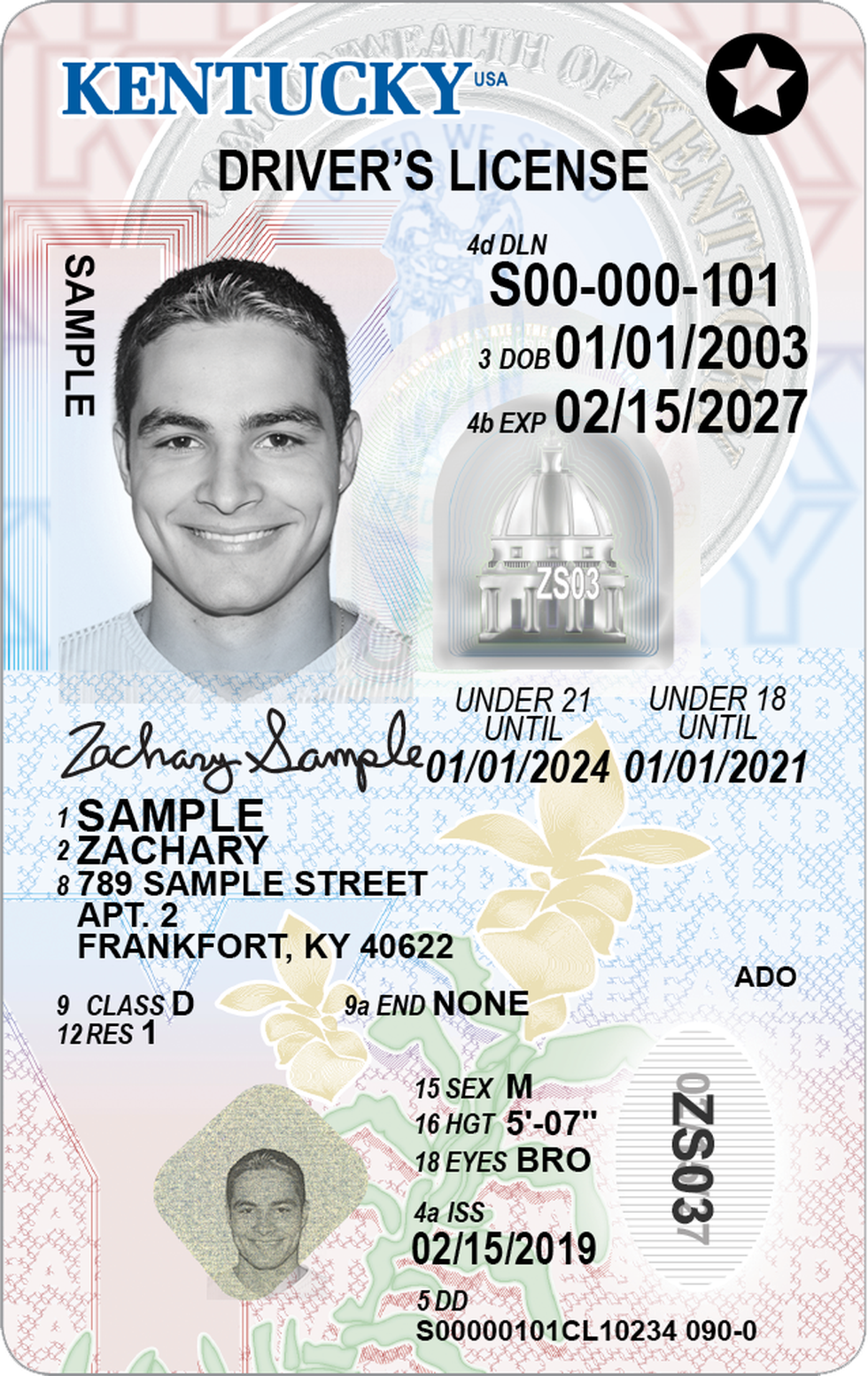 All IDs will change to the new look, including driver's licenses for residents under the age of...