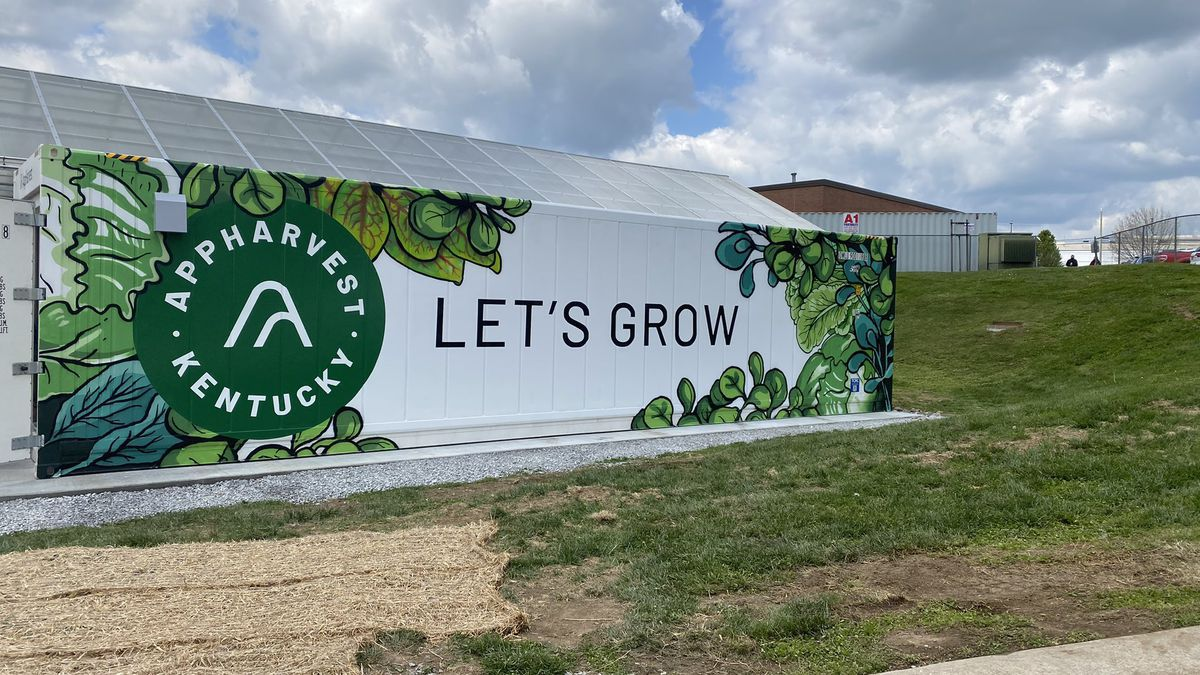 In the spirit of sustainably, AppHarvest is partnering with Madison County High School to teach...