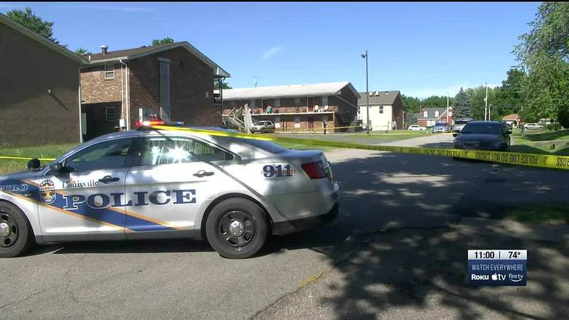 A teenage boy was shot in a neighborhood near GE's Appliance Park on Wednesday afternoon and is...