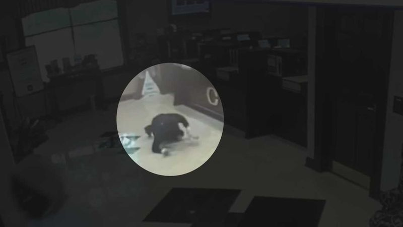 Newly-released video is shedding light on an armed bank robbery from earlier this year in Fort...