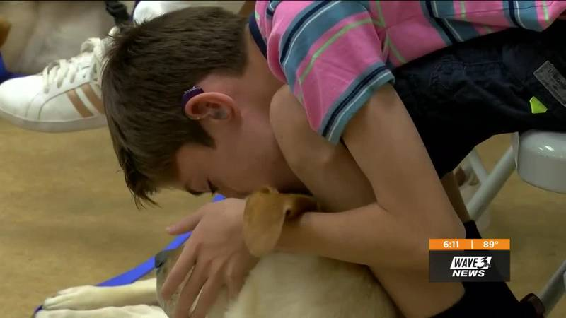 Shannon Cogan and her son's journey for a service dog
