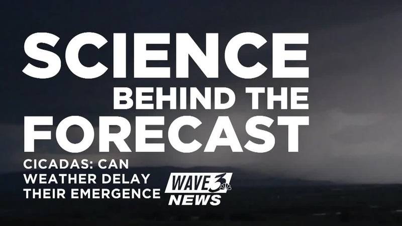 Science Behind the Forecast: Cicadas: Could cool weather delay their emergence