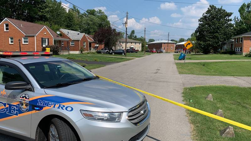 Dispatchers said the shooting was called in around 2:46 p.m. to the 4200 block of Norene Lane.
